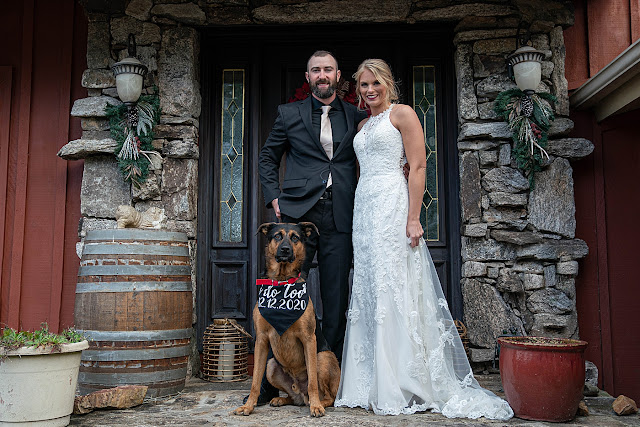 Bride and Groom together with dog with wedding bandana Magnolia Farm Asheville Wedding Photography captured by Houghton Photography