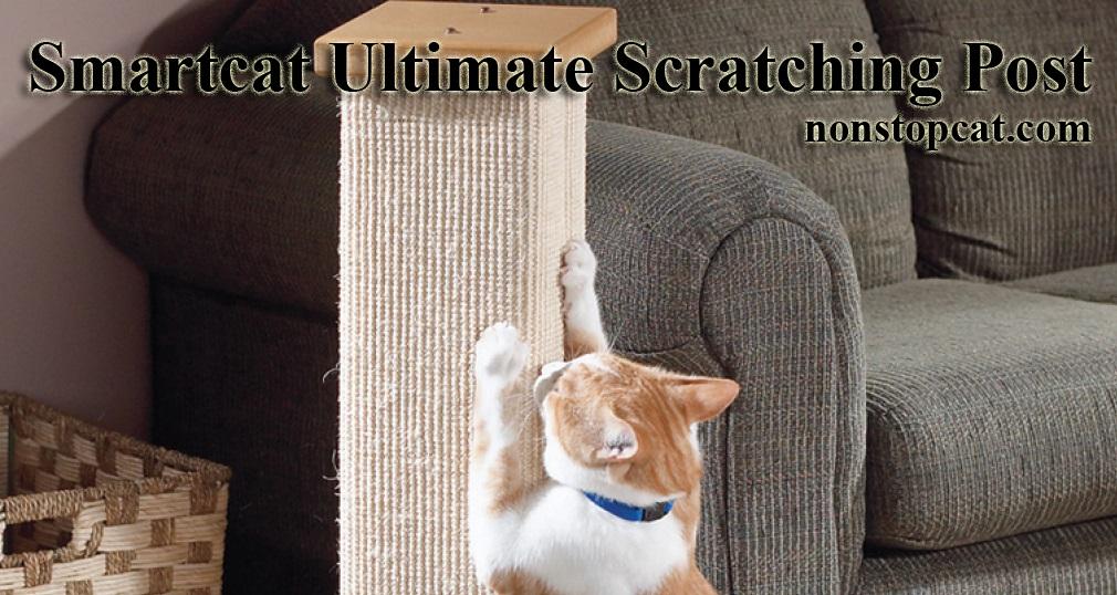 Smartcat Ultimate Scratching Post