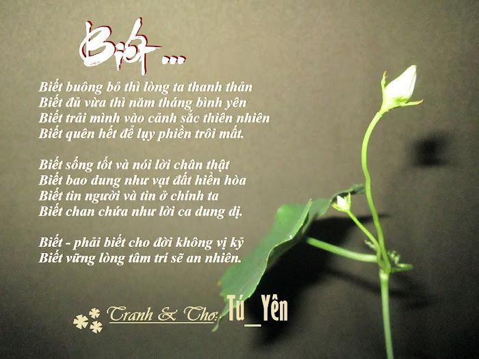 Trang thơ Tú_Yên (P2) - Page 12 21Bi%25E1%25BA%25BFt