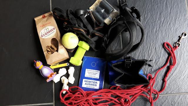 Reisevorbereitungen für unseren Urlaub in Schweden mit Hund