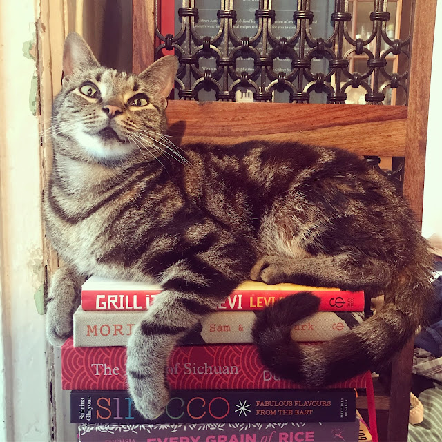 A tabby cat sitting on a pile of cookbooks.