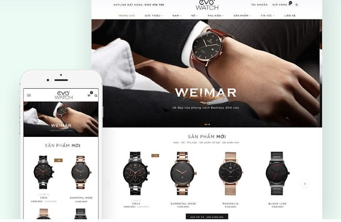 Template, Template interface Evo Watch