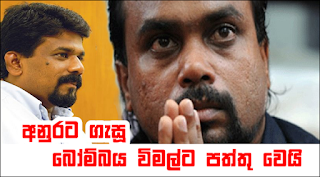 wimal-vs-anura-divaina-news-peper-case