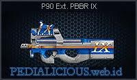 P90 Ext. PBBR IX