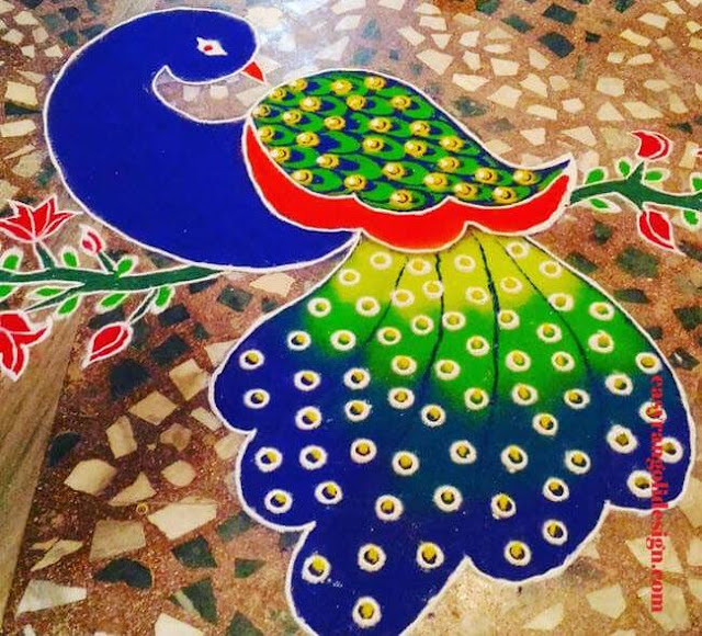 rangoli design for peacock for competition
