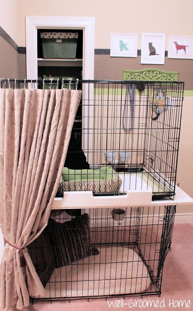 Pet bunk bed crates :: OrganizingMadeFun.com