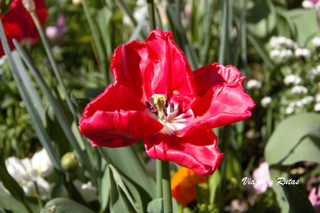 Jardín de Europa, Annecy