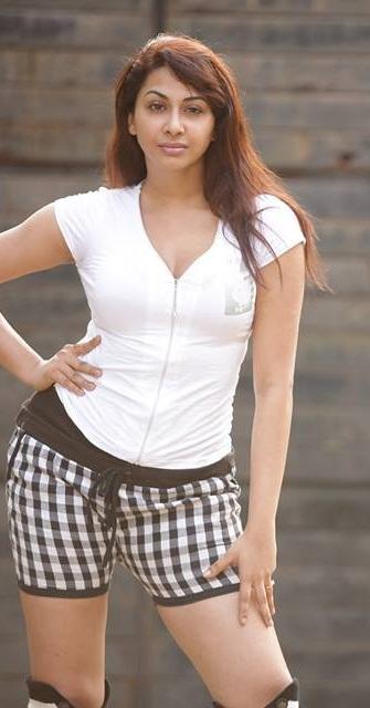 Gayathri Iyer Hot Photo
