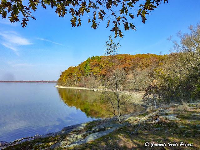 Rio San Lorenzo, Wellesley Island State Park, NY por El Guisante Verde Project