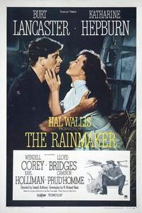 Watch The Rainmaker Online Free in HD