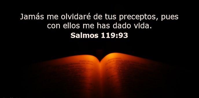 Jamás me olvidaré de tus preceptos, pues con ellos me has dado vida.