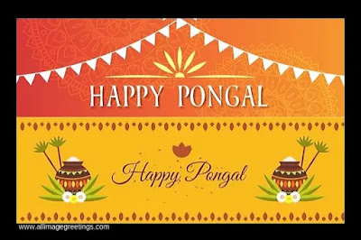 Pongal photo