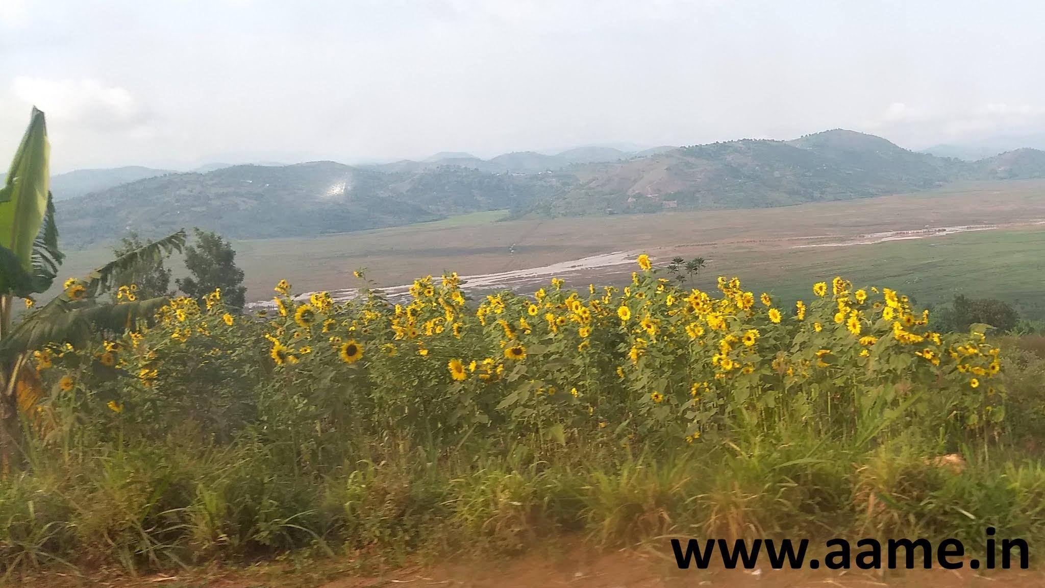 Rwanda - Landscape - 04