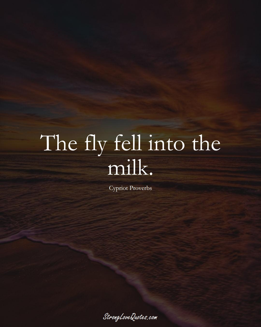 The fly fell into the milk. (Cypriot Sayings);  #MiddleEasternSayings