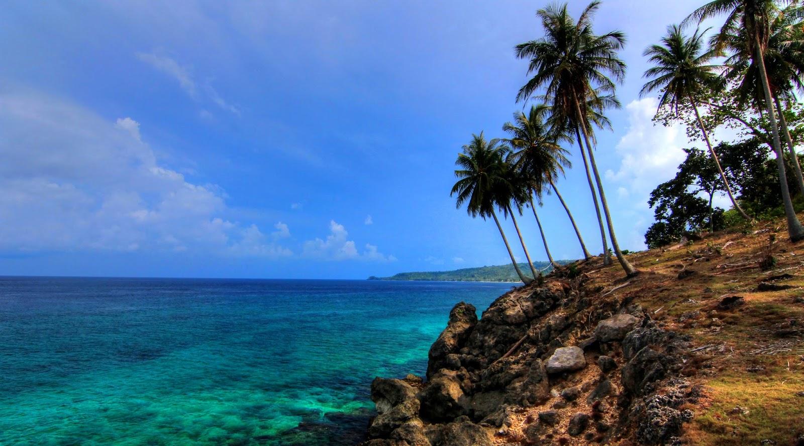 Pantai Ujung Kareung pohon kepala