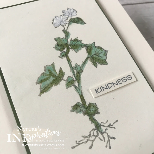 By Angie McKenzie for Ink and Inspiration Blog Hop; Click READ or VISIT to go to my blog for details! Featuring the amazing Field Journal Cling Stamp Set from the 2020-21 Annual Catalog; #fieldjournalstampset #heatembossing #coloringwithblends #alcoholmarkers #chalkmarker #fussycutting  #20202021annualcatalog #bloghops #inkandinspirationbloghop #stampinup #cardtechniques #friendshipcards #chipmunk #fieldflowers #nature #naturesinkspirations