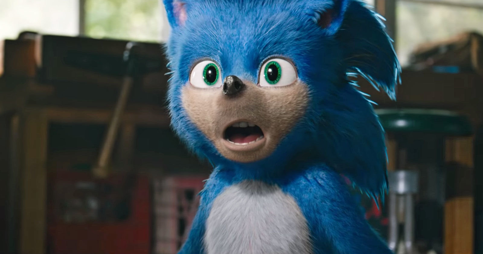 Sonic (Pllano Geral)