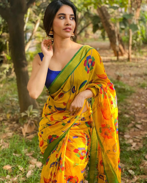 Nabha Natesh Saree Photos Navel Queens