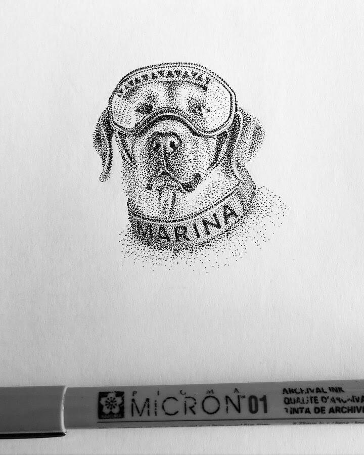 09-Frida-A-navy-rescue-dog-María-Lecanda-www-designstack-co