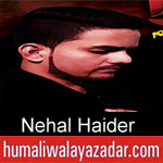 https://www.humaliwalyazadar.com/2018/09/nehal-haider-nohay-2019.html