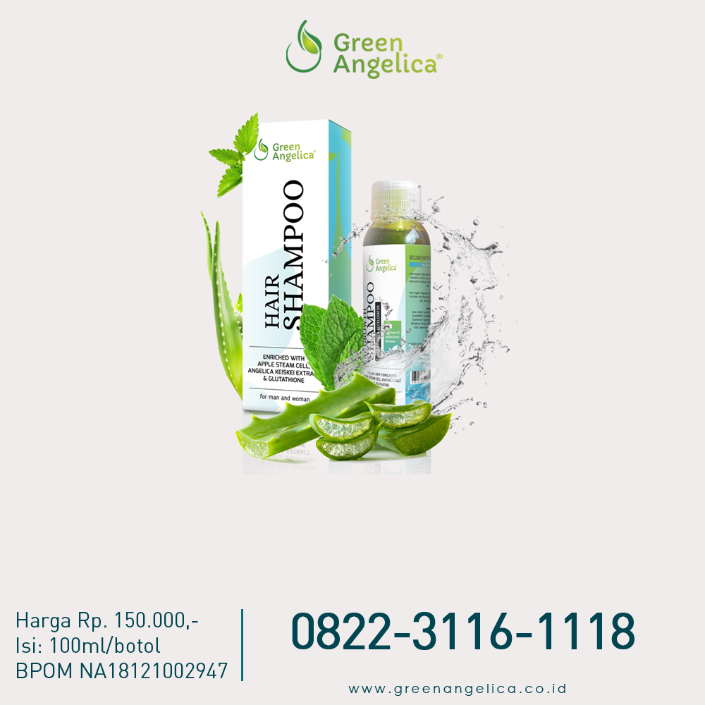 Green Angelica Indonesia Sampo Ketombe