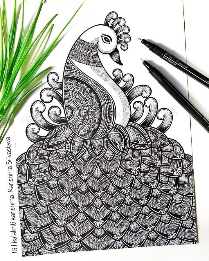 07-Peacock-Karishma-Srivastava-www-designstack-co