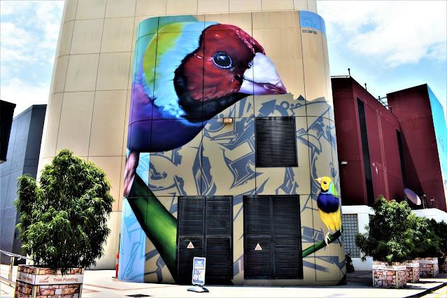 Darwin Street Art | Dvate