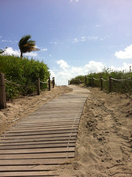 Walk-way with Grass on right and left Side at Miami Beach