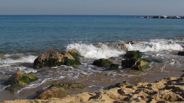 morze w Barcelonie