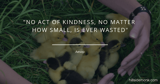 10 Short Kindness Quotes To Make You Better Person-6     No act of kindness, no matter how small, is ever wasted ~Aesop