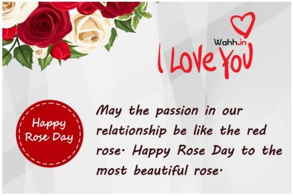 Amazing  Rose Day Status HINDI