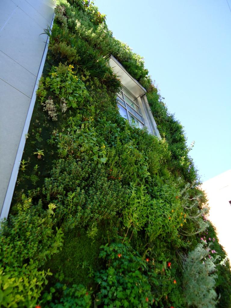 Nine hours of separation un giardino verticale a san for Giardino verticale