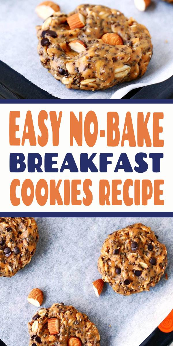 These No-Bake Breakfast Cookies are easy to make, healthy, packed with protein and simply delicious. They can be whipped up in less than 5 minutes and stored for up to two weeks. #breakfast #breakfastrecipes #breakfastideas #breakfastcookies #healthy #healthyrecipes