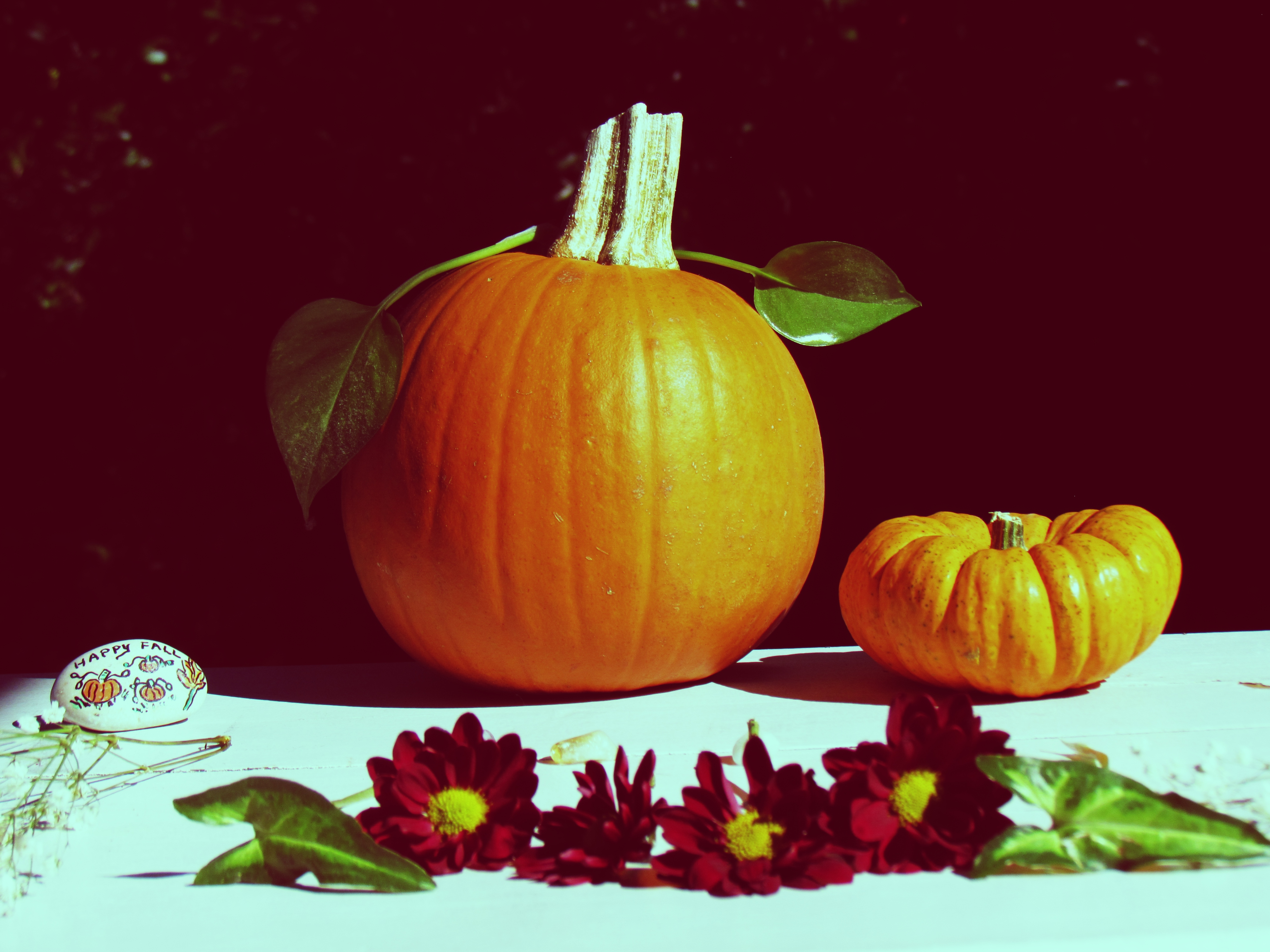 An autumnal equinox outdoor forest gathering and forest feast with pumpkins and fall flower arrangements in a small town in Florida