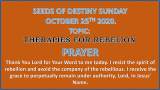 Seeds Of Destiny (SOD) Devotional, 25 October 2020 - Therapies For Rebellion