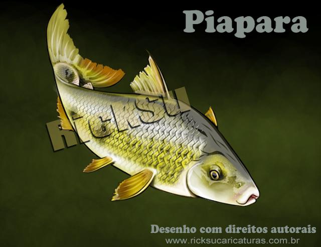 desenho de peixes para camisetas e grupos de pesca
