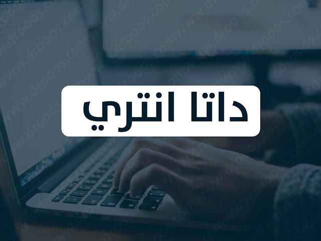 ادخال بيانات Data Entry (داتا انتري)