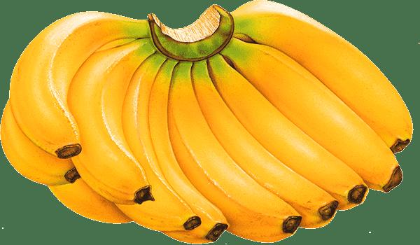 pisang, manfaat pisang, manfaat pisang untuk tinggi badan, pisang untuk tambah tinggi