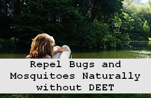 https://foreverhealthy.blogspot.com/2012/04/repel-bugs-and-mosquitoes-without-deet.html#more