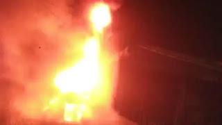 महाराष्ट्र में फिर शर्मसार हुई इंसानियत, लावारिस कुत्ते को जिंदा जलाया  | #NayaSaberaNetwork