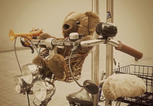 Beste fietsstoeltjes test