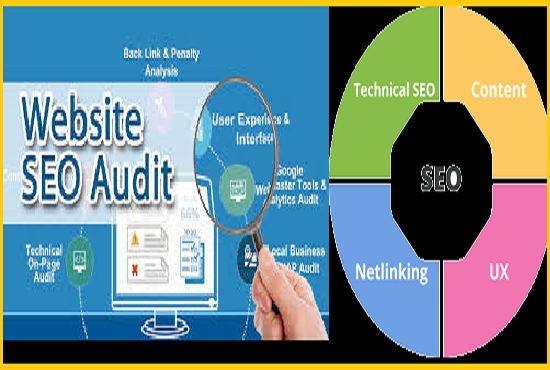 Get an SEO Audit Report with a long term plan action to execute the SEO your website