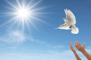 Λευκό-περιστέρι-ελευθερώνεται-στον-ουρανό