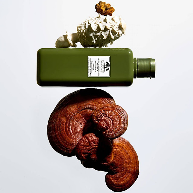 mega-mushroom-relief-resilience-soothing-treatment-lotion