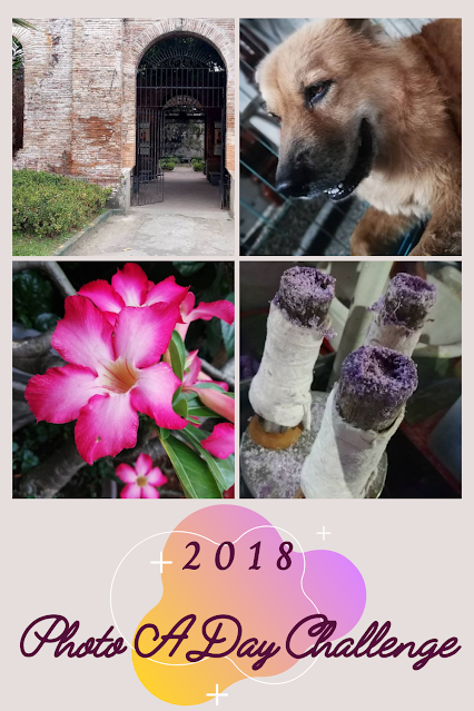 Photo A Day Challenge for 2018