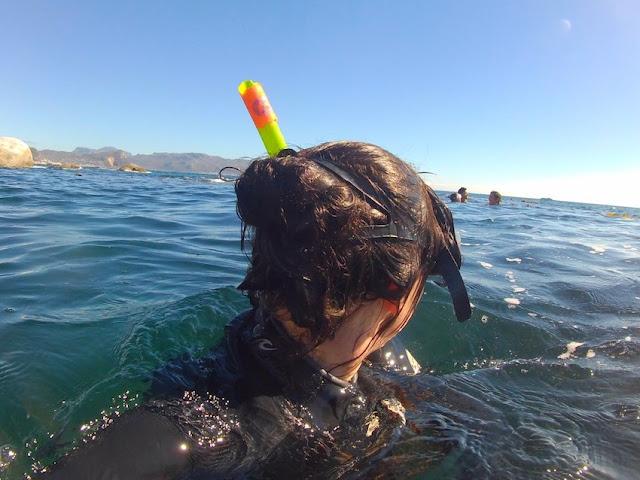 Snorkel bun