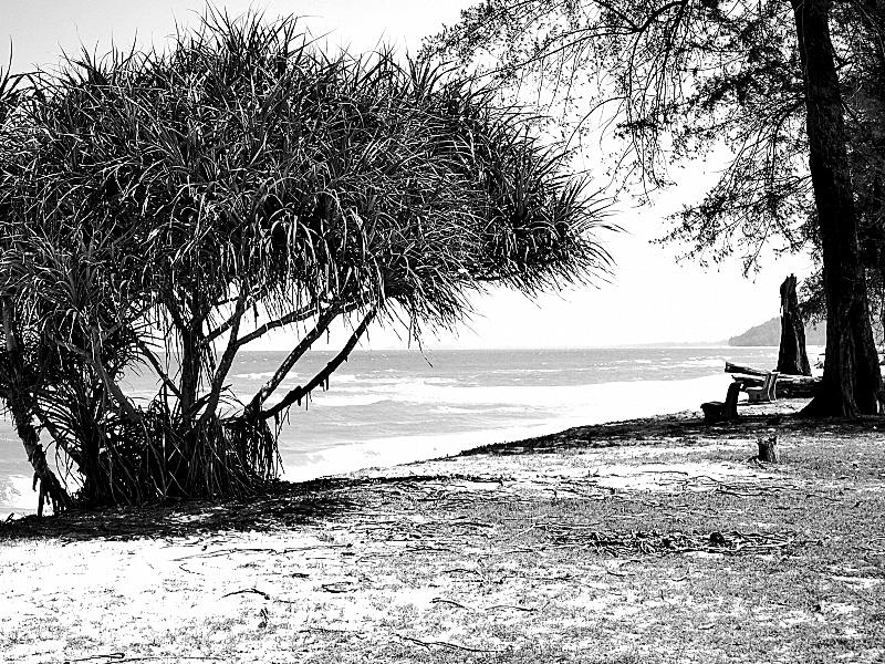 Quiet On The Beach 02