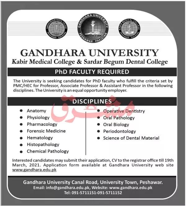 Gandhara University Medical Jobs 2021 in Peshawar KPK