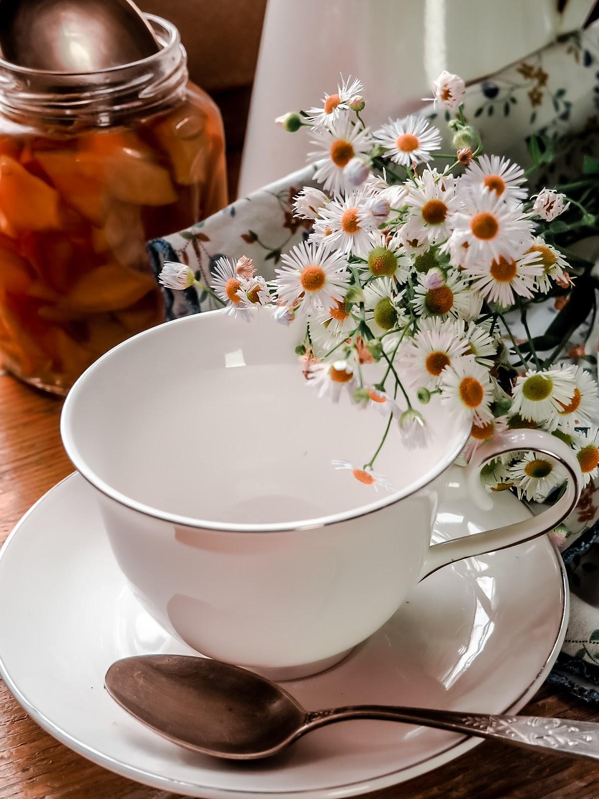 filizanka, herbata, domowa-herbata, fermentacja,