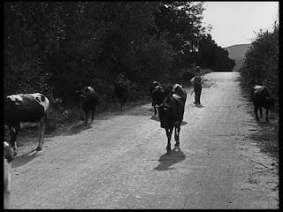 """Кадр из к/ф Чарли Чаплина """"Солнечная сторона"""" / Sunnyside (1919) - 3"""